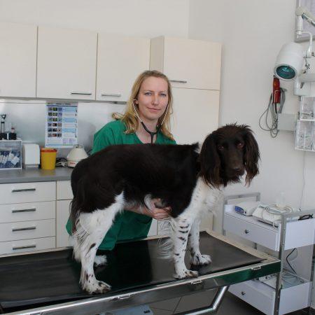 Tierärztin Sonja Spankowsky mit Hund auf Behandlungstisch
